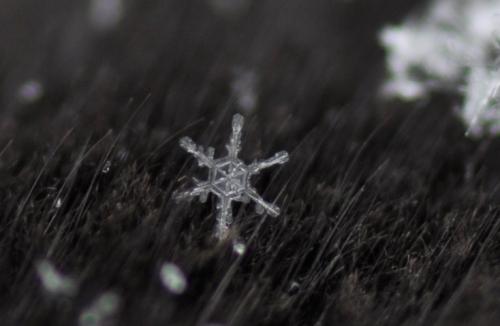 snowflake-26